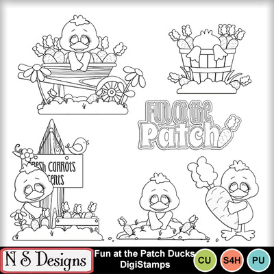 Fun_at_the_patch_ducks_ds