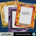 Flower_frenzy_frames_-_01_small