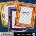 Flower_frenzy_frames_-_01_small