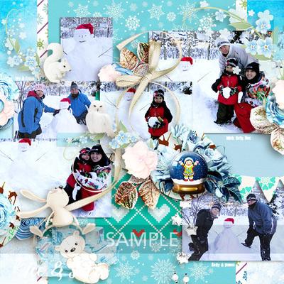 Ice___snow_sample2