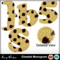 Cheetahmon_small