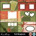 Fallbragbook_small
