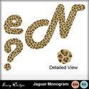 Jaguarmono_small