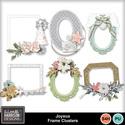Aimeeh_joyeux_frames_small