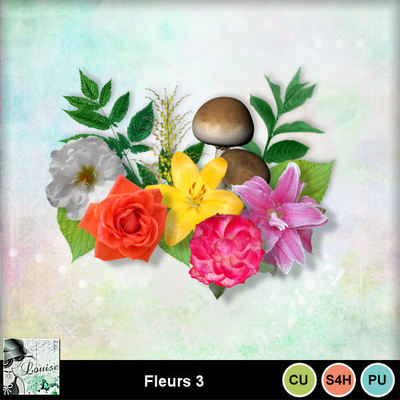 Louisel_cu_fleurs3_preview