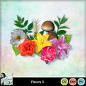 Louisel_cu_fleurs3_preview_small