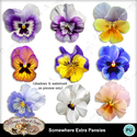 Pansies_small