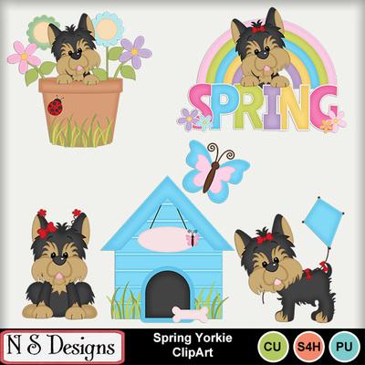 Spring_yorkie_ca