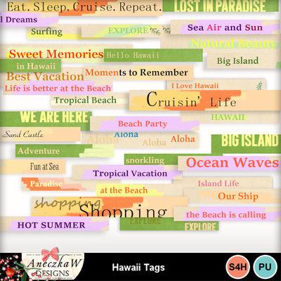 Hawaii_tags