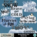 Snow_much_fun_word_art-01_small
