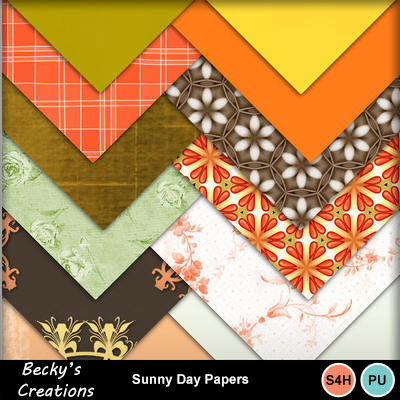 Sunny_day_papers_
