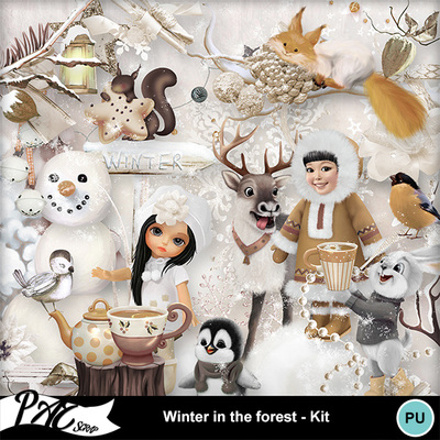 Patsscrap_winter_in_the_forest_pv_kit