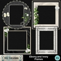 Ebony_and_ivory_frames-01_small