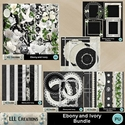 Ebony_and_ivory_bundle-01_small