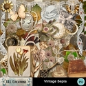 Vintage_sepia-01_small