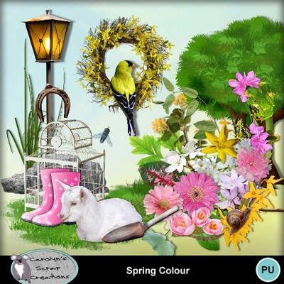Csc_spring_colour_wi_1
