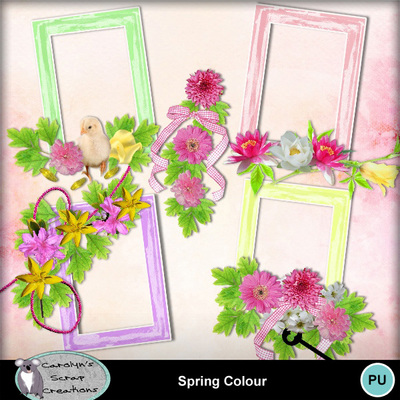 Csc_spring_colour_wi_2
