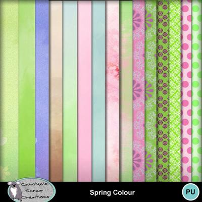 Csc_spring_colour_wi_3