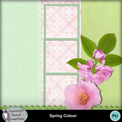 Csc_spring_colour_wi