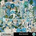 Blue_summer-01_small