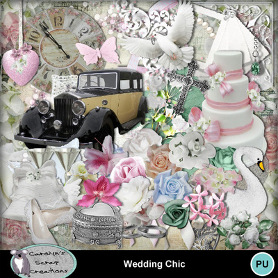 Csc_wedding_chic_wi_1
