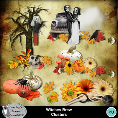 Csc_witches_brew_wi_clusters