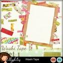 Washi1_small