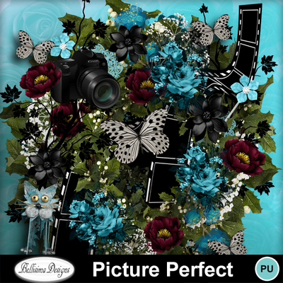 Picture_perfect_3