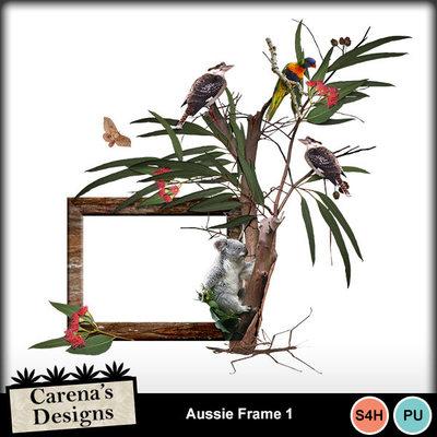 Aussie-frame-1