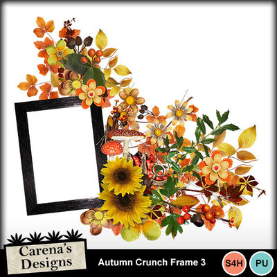 Autumn-crunch-frame-3