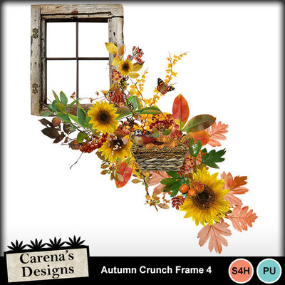 Autumn-crunch-frame-4
