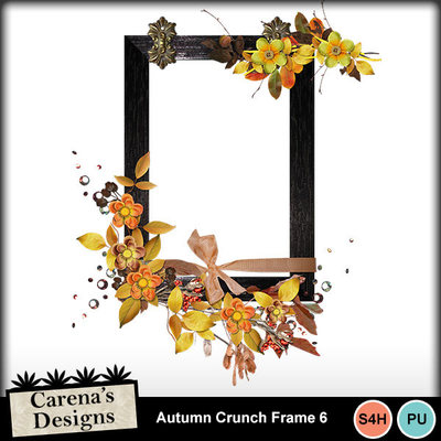 Autumn-crunch-frame-6