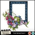 Fresh-spring-frame-3_small