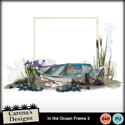 In-the-ocean-frame-3