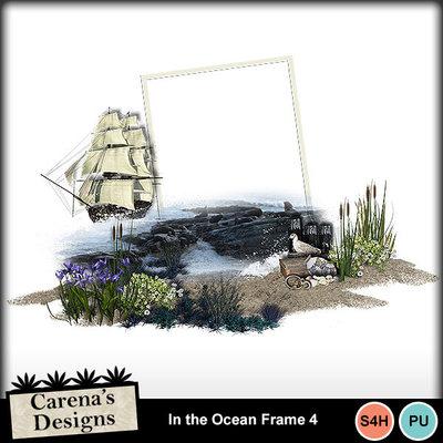 In-the-ocean-frame-4