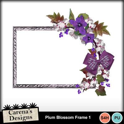 Plum-blossom-frame-1