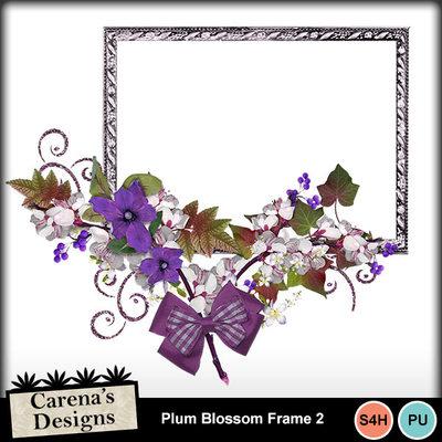 Plum-blossom-frame-2