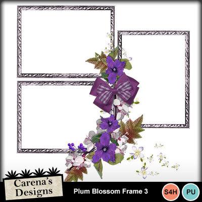 Plum-blossom-frame-3