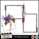 Plum-blossom-frame-4_small
