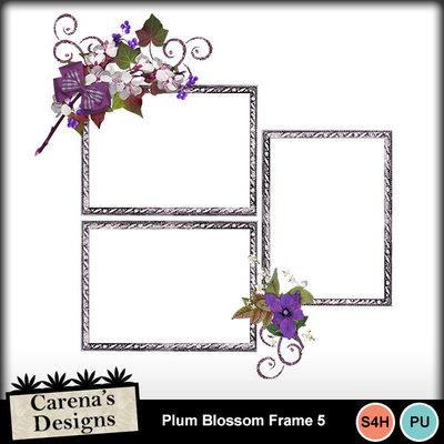 Plum-blossom-frame-5