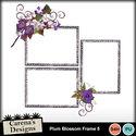Plum-blossom-frame-5_small
