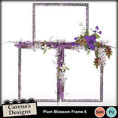 Plum-blossom-frame-6