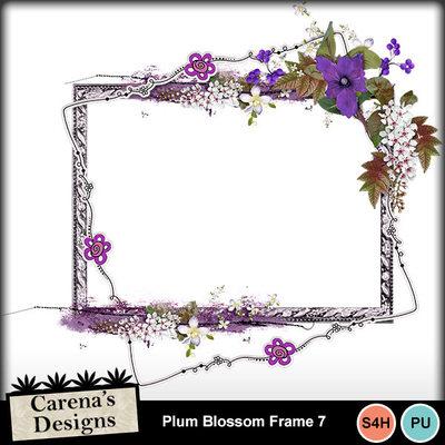 Plum-blossom-frame-7