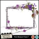 Plum-blossom-frame-7_small