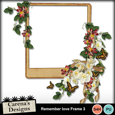 Remember-love-frame-3