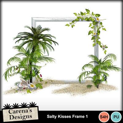 Salty-kisses-frame-1