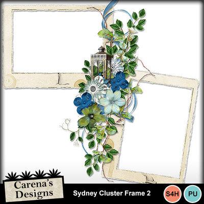 Sydney-cluster-frame-2