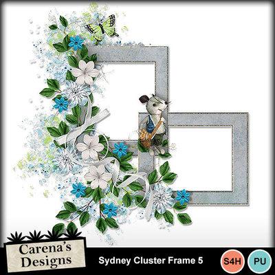 Sydney-cluster-frame-5