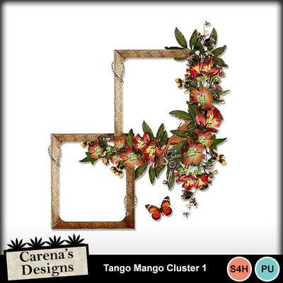 Tango-mango-cluster-1