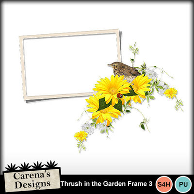 Thrush-in-the-garden-frame-3